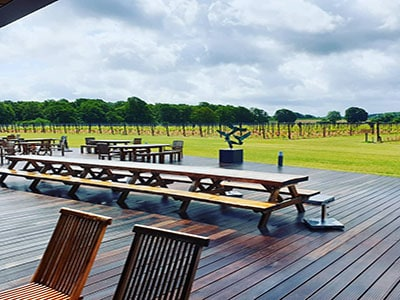 View of the vineyard from the decking